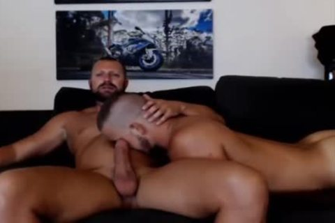 young Bear Sucks A daddy Bears dong Live On Cruisingcams Com